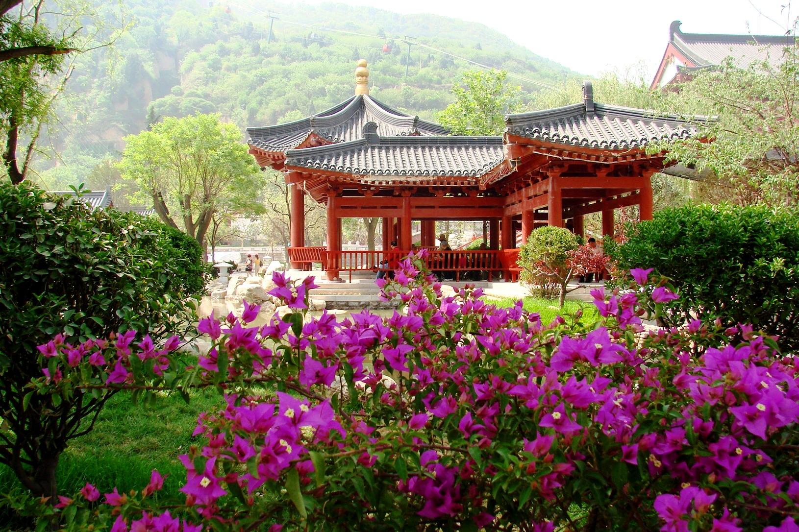 Лето 2017 - начало сезона по китайскому календарю