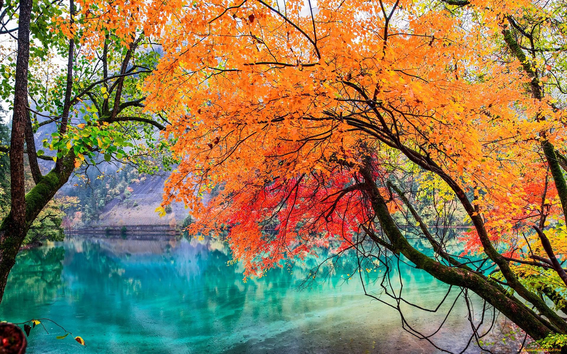 Межсезонье между Летом и Осенью 2021 года - начало Межсезонья по китайскому календарю
