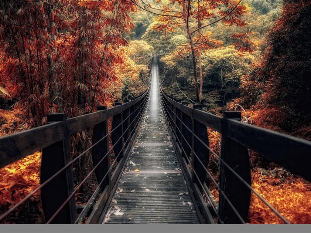 Межсезонье между Осенью и Зимой 2018 - начало Межсезонья по китайскому календарю