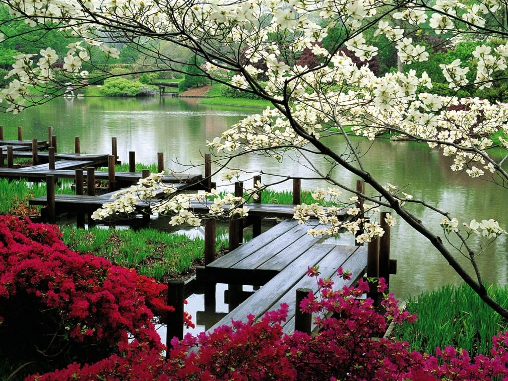 Межсезонье между Весной и Летом 2018 - начало Межсезонья по китайскому календарю