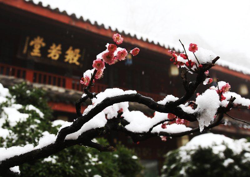 Межсезонье между Зимой и Весной 2020 года - начало Межсезонья по китайскому календарю