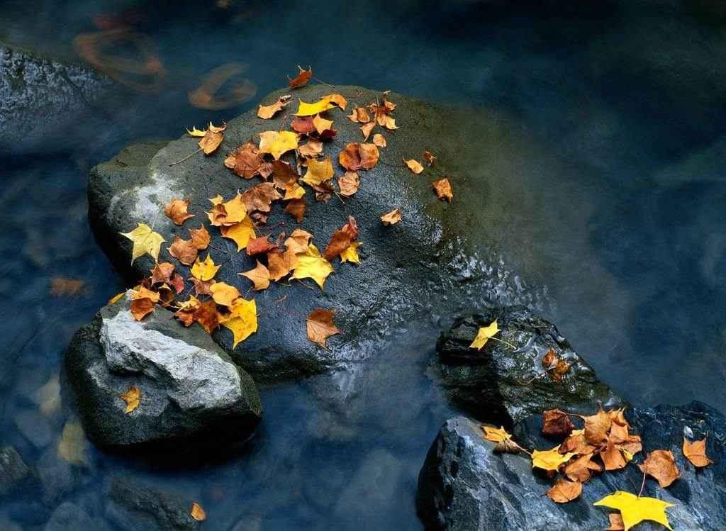 Межсезонье между Осенью и Зимой в 2014 году