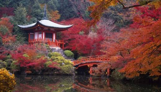 Осень 2014 года по китайскому календарю