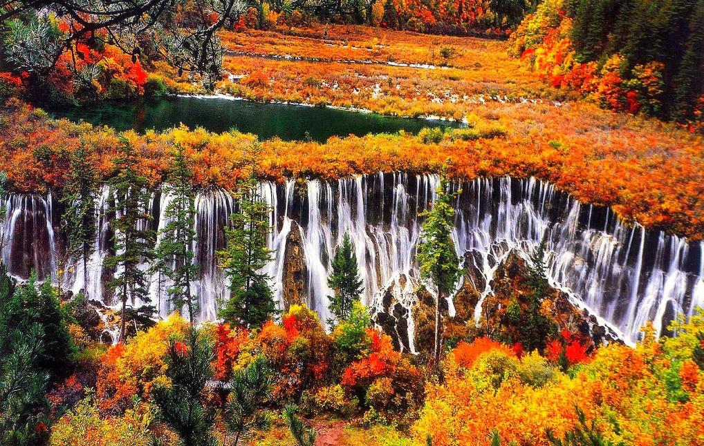 Осень 2017 - начало сезона по китайскому календарю