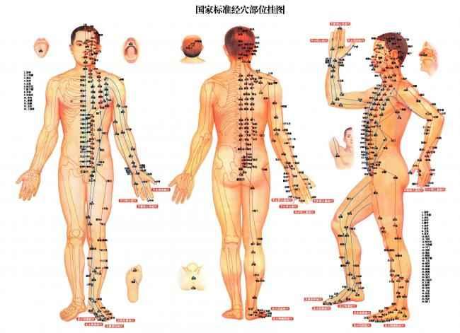 Меридианы человеческого тела в соответствии с народной китайской медициной