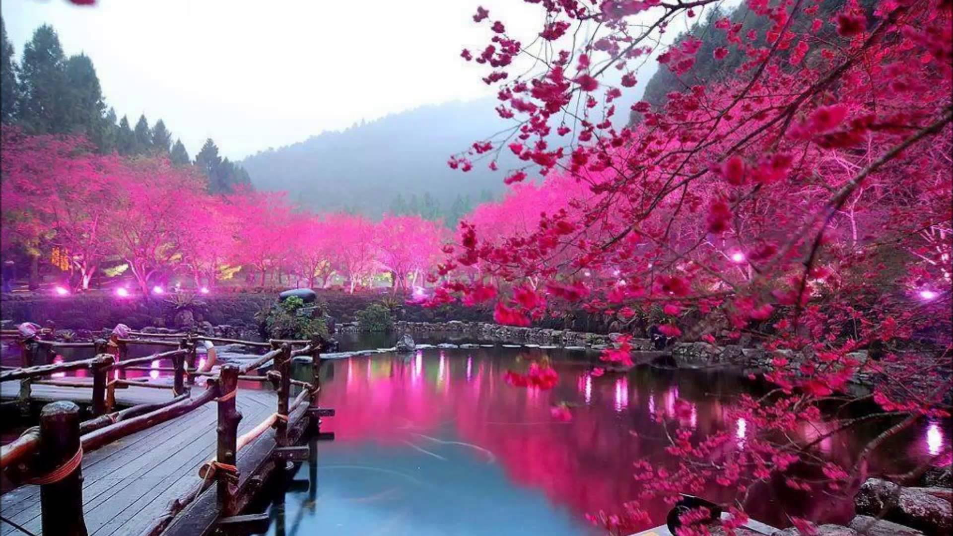 Весна 2017 - начало сезона по китайскому календарю