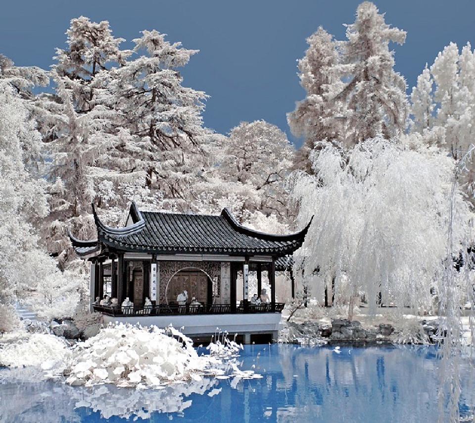 Зима 2017 - начало сезона по китайскому календарю